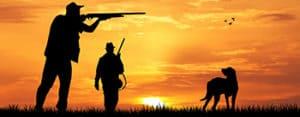 Labradoodle Hunting Dog
