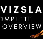 The Vizsla: A Complete Breed Overview