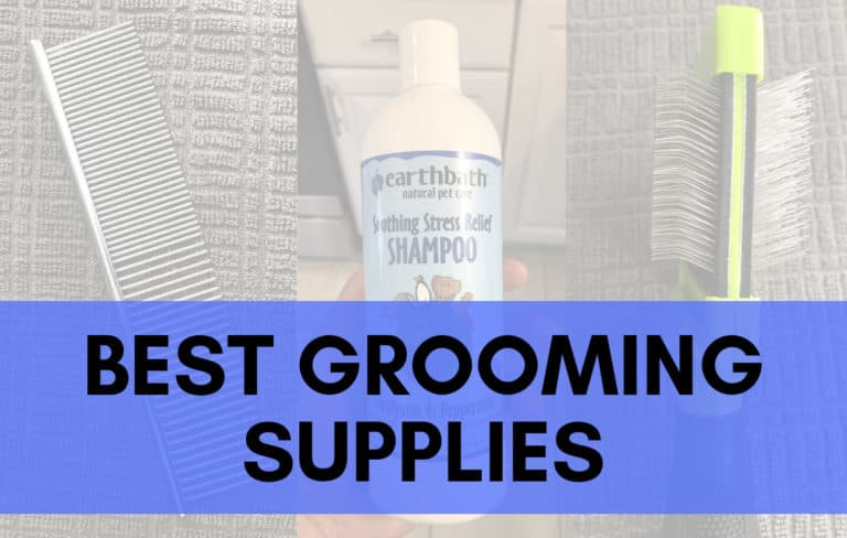Best Grooming Supplies_Trending Breeds
