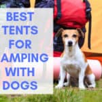 5 Best Tents for Camping With Dogs + Things To Consider